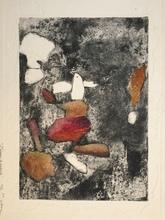 Jean OSANNE - Grabado - l'oiseau de grenade