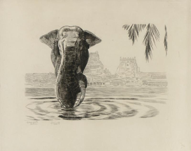 Paul JOUVE - Grabado - Eléphant de Madura