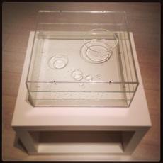 Max COPPETA - Sculpture-Volume - Sheer Drops Box