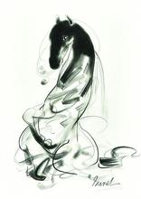 Sunil DAS - Drawing-Watercolor - Horse