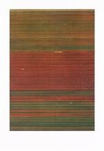 Andreas GURSKY - Estampe-Multiple - Tulpenfelder / Tulipfields