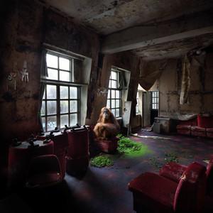 Henk VAN RENSBERGEN - Photography - Arlette