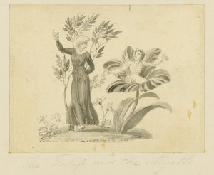 Thomas STOTHARD, The fables of Flora 1794 Tulip and Myrtle