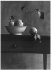 Christian COIGNY - Photo - Nature morte aux citrons