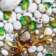 Piero GILARDI - Sculpture-Volume - Spiaggia con hexamplex nigrus