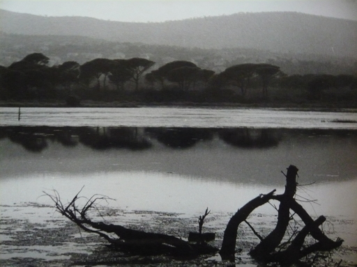 Théodore  BLANC & Antoine  DEMILLY - Photo - PAYSAGE