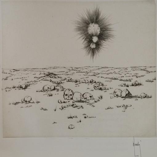 Bernard LOUEDIN - Grabado - Cranes-pierres