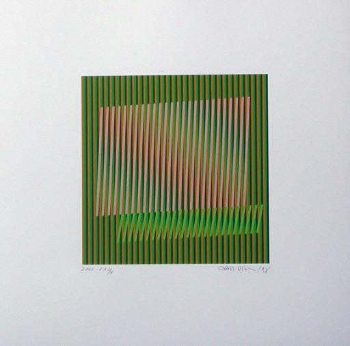 Carlos CRUZ-DIEZ - Druckgrafik-Multiple - induction double fréquence