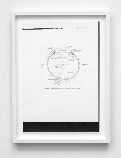 Jenny AKERLUND - Drawing-Watercolor - « Retina report (no.2) »