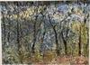 Celia PERCEVAL - Peinture - Rosellas in the Sunset