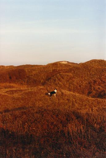 Yann STOFER - Fotografia - Charly