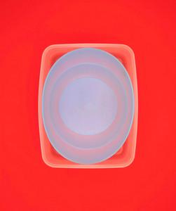 Richard CALDICOTT - Photography - Untitled 153