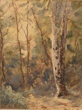 Félix ZIEM - 水彩作品 - Forêt de Fontainebleau