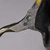 Franz BERGMAN - Sculpture-Volume - Parrot on a Branch
