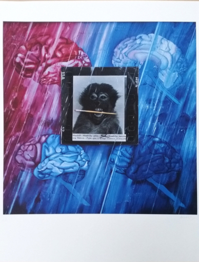 Jacques MONORY - Print-Multiple - Monkey