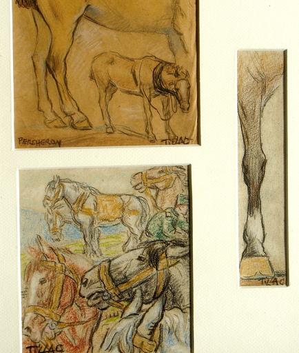 Pablo TILLAC - Dibujo Acuarela - Zaldia-zaldi!  I- chevaux-cheval basque