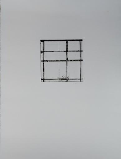 Brice MARDEN - Estampe-Multiple - T1
