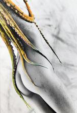 Sergio VALLE DUARTE (1954) - Octopuss 1985