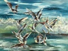 Diana MALIVANI - Peinture - Gulls