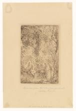 詹姆斯.恩索尔 - 版画 - Jardin d'Amour