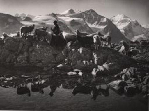 Albert STEINER - Fotografie - Schafhirte in den Bergen (Berninagebiet) (im Hintergrund die