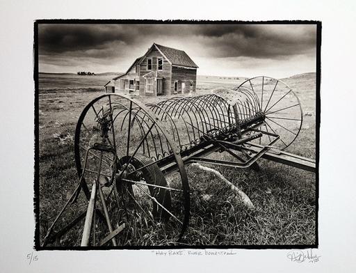 Nick DEKKER - Fotografia - Hay Rake