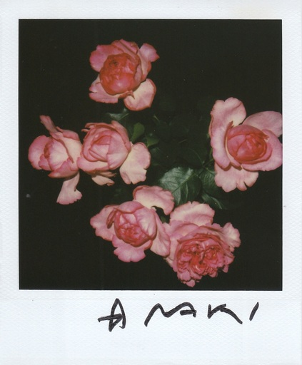 Nobuyoshi ARAKI - Photography - Araki Nobuyoshi Polaroid photo 62_048 signed