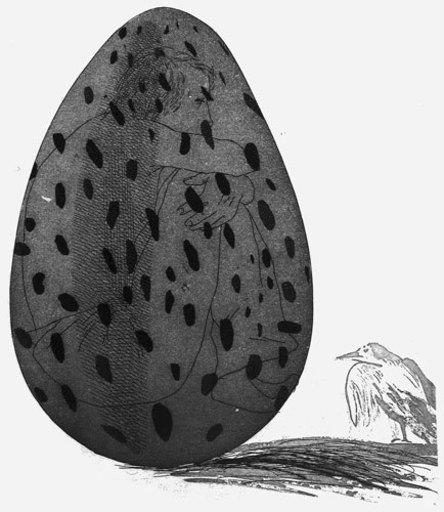 David HOCKNEY - Print-Multiple - The Boy Hidden in an Egg
