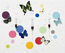 Damien HIRST (1965) - Happiness