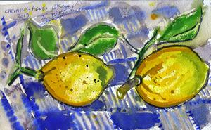 Jean-Pierre CHEVASSUS-AGNES - Dessin-Aquarelle - les citrons de MENTON (06) FRANCE