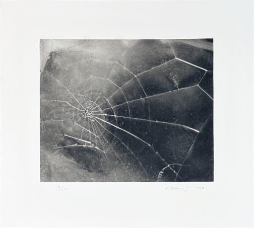 Vija CELMINS - Estampe-Multiple - Spider Web