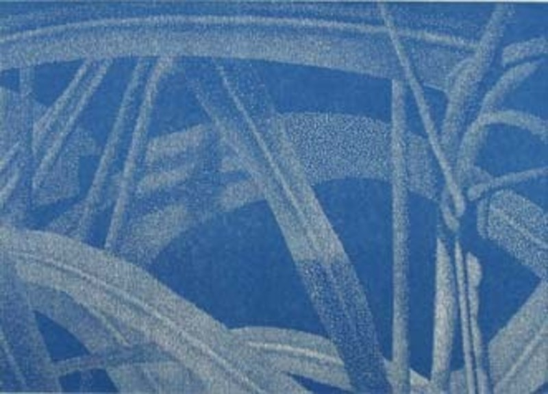 Franz GERTSCH - Grabado - Detail (Gräser 6-1, blau)