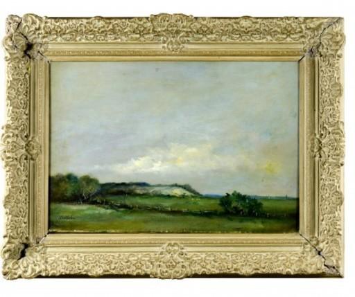Adam BALTATU - Gemälde - peisage of Husi