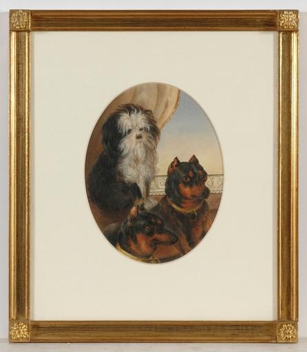 """Emanuel Thomas PETER - Disegno Acquarello - """"Portrait of dogs"""" rare watercolor! 1.H. of the 19th Century"""