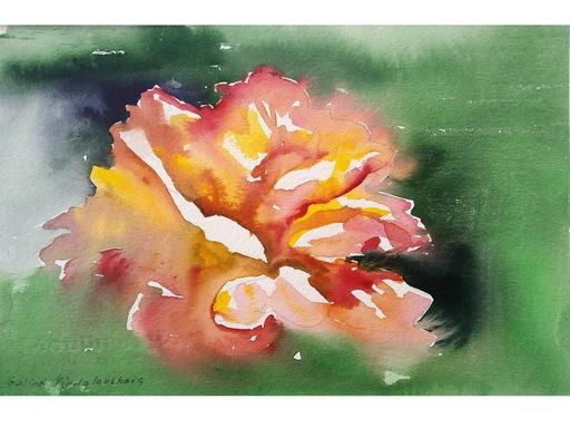 """Galina VINDALOVSKAIA - Dibujo Acuarela - """"Tender Rose"""" original watercolor painting"""