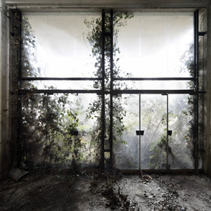 Henk VAN RENSBERGEN - Fotografia - Let Nature In
