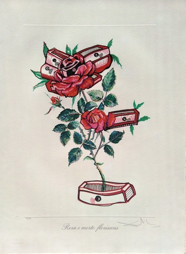 萨尔瓦多·达利 - 版画 - Surrealist Flowers: Roses of memory