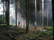 Gregory CREWDSON - Fotografia - Production Still (Forest Gathering #4)