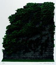 Ivor ABRAHAMS - Print-Multiple - Efeu-Mauer