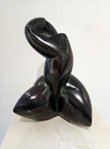 POLLES - Skulptur Volumen - Phéomélanine