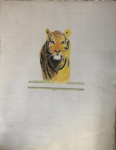 "Doroteo ARNÁIZ - 水彩作品 - ""Tigre"""
