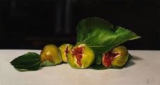 Riccardo GIRAUDO - Painting - Fichi