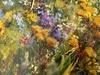 Diana MALIVANI - Pittura - Summer in Provence