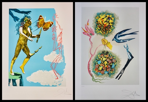 Salvador DALI - Stampa-Multiplo - Magic Butterfly & The Dream Suite