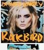 Andy WARHOL - Print-Multiple - Blondie - Debbie Harry