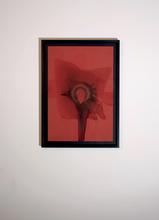 Otto PIENE (1928-2014) - Rote Feuerblume