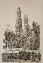 Giorgio MORANDI - Grabado - The Poplars | I Pioppi