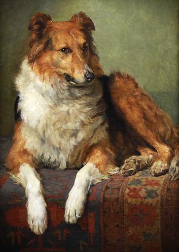 Charles II VAN DEN EYCKEN - Pintura - portrait of a collie dog