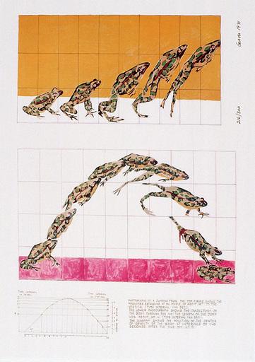 Nancy Stevenson GRAVES - Estampe-Multiple - Jumping frog