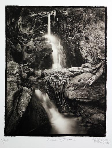 Nick DEKKER - Photo - Zion Stream